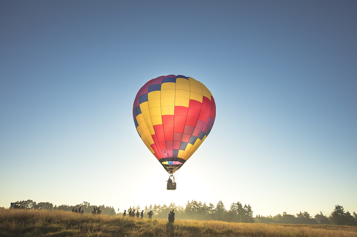D3_Hot_Air_Balloon_16059