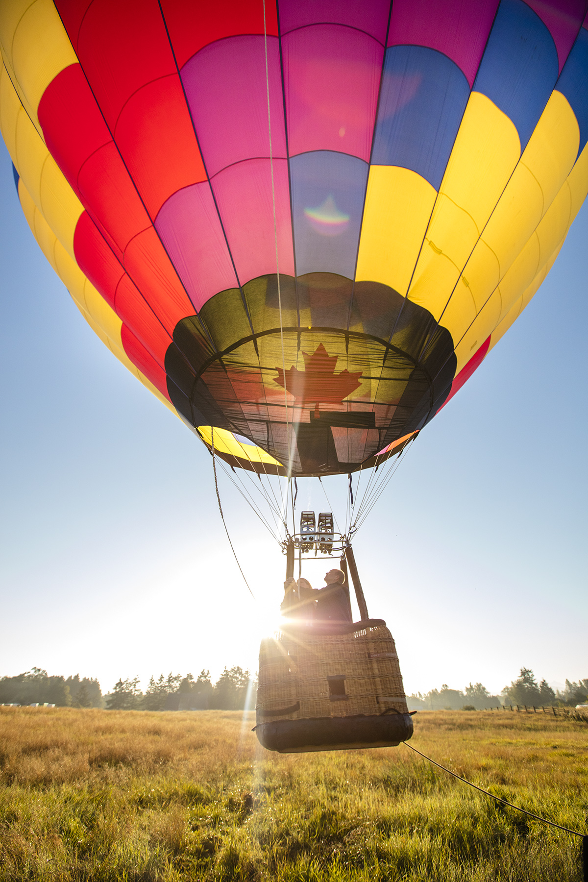 D3_Hot_Air_Balloon_16346