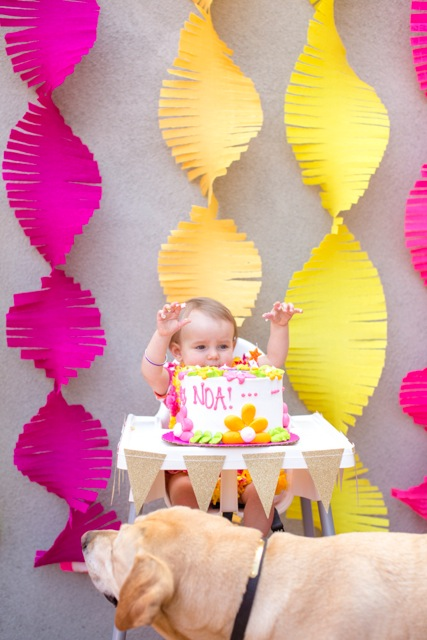 Noa_1stBirthday_May2015__0505